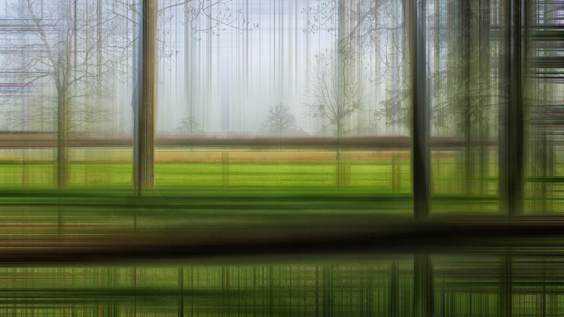 <p>Размытый лес</p>