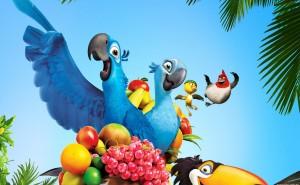 Рио попугай