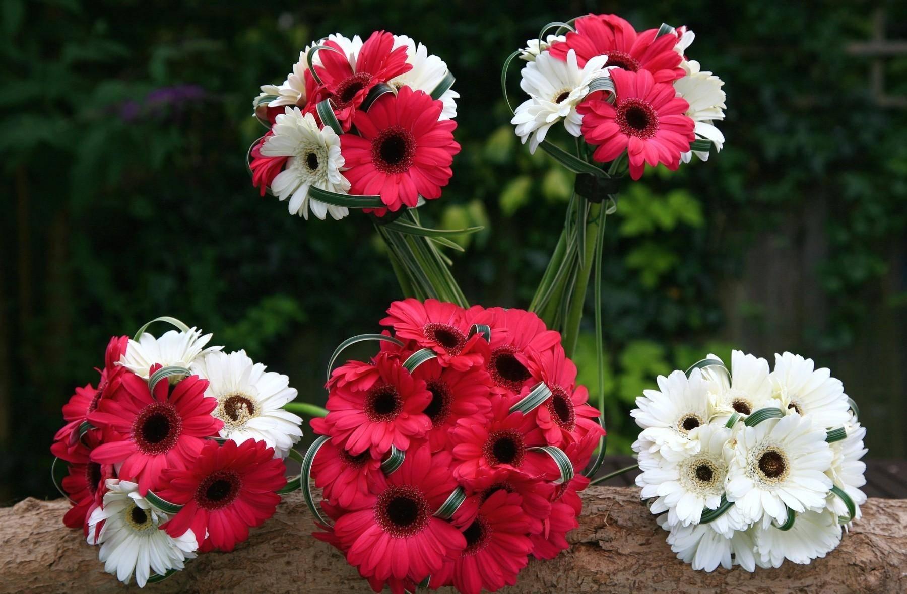 <p>Букет цветов </p>