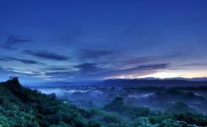 Туман пейзаж обои высокого качества на рабочий стол туманный лес