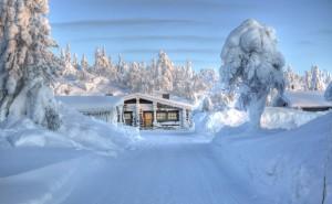 Зимняя дорога обои на рабочий стол