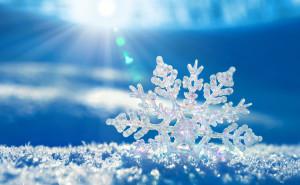 Снежинка макро фото