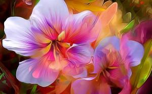 Макро цвето графика