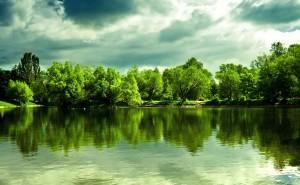 Озеро в лесу отражение вода деревья небо зеленый