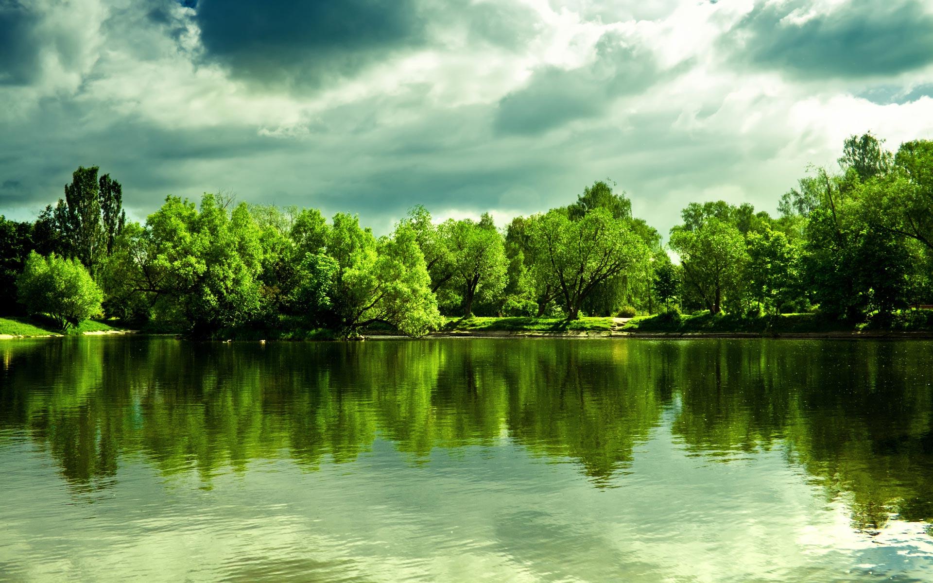 <p>Озеро в лесу</p>