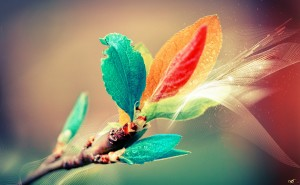 Цветные листья графика разноцветный