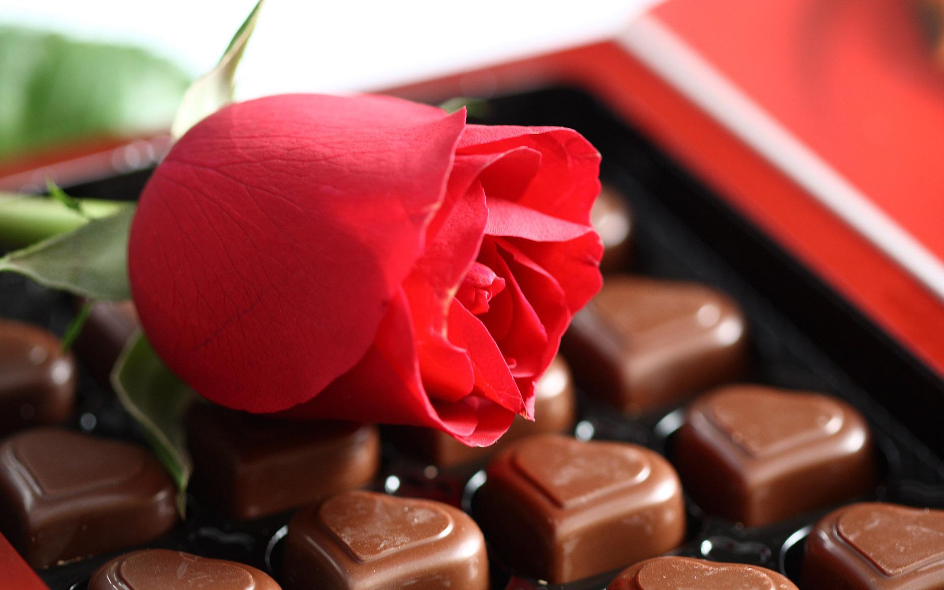 <p>Шоколад</p>