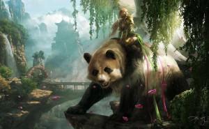Панда Животное Девушка