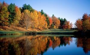 Лесное озеро пейзаж обои высокого качества на рабочий стол