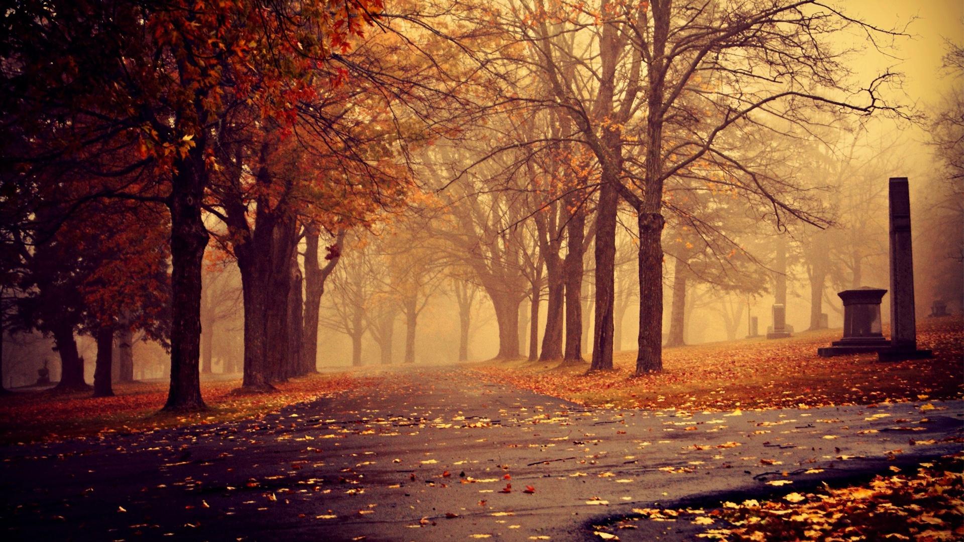 <p>Осень вечером</p>