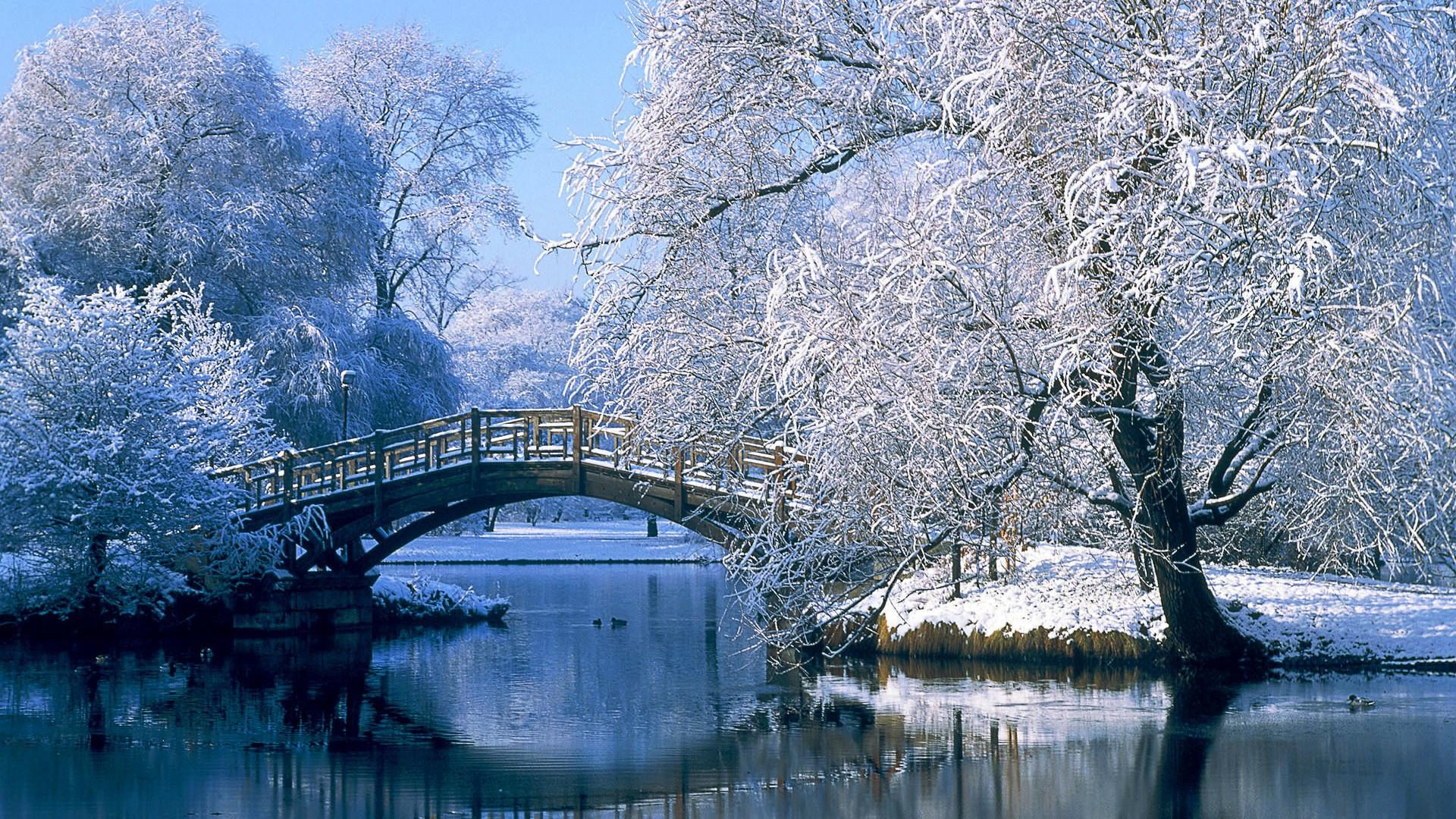 <p>Мост зимой</p>